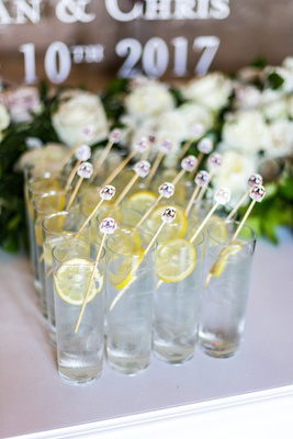 Swizzel stick with dog face on it inside water with lemon highball glass wedding ceremony