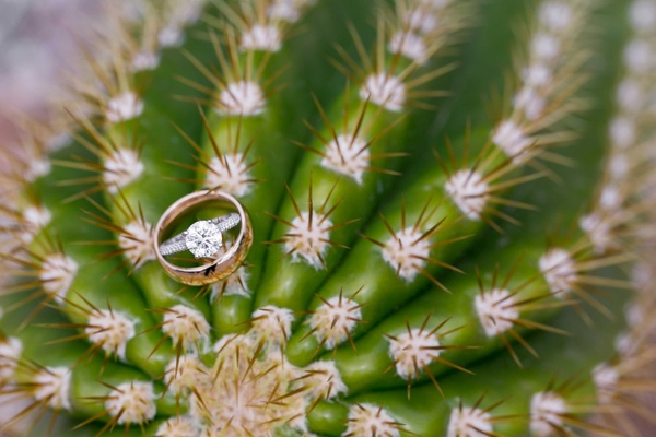 engagement ring and gold wedding band on top of a cactus in arizona