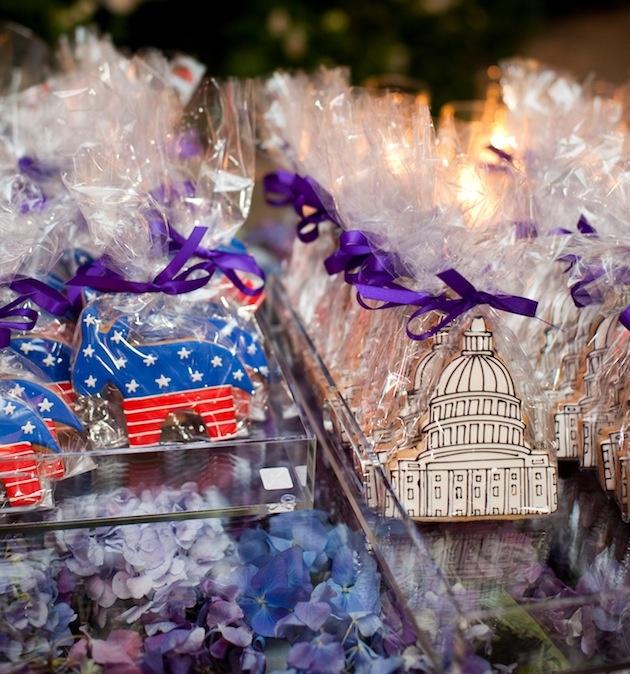 Democratic donkey and United States capitol