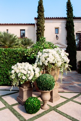 Boxwood topiary balls next to white flowers on top of urns