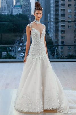 Embroidered cap sleeve natural waist A-line gown with full circular skirt and illusion back.