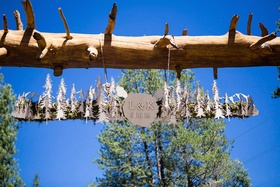 Wooden cut out trees and pine hanging from tree trunk