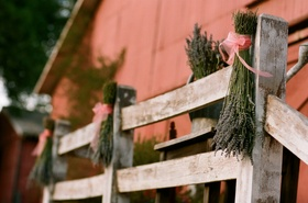 Lavender tied to rustic fence with pink ribbon