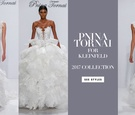 Pnina Tornai for Kleinfeld 2017 Dimensions Collection wedding dresses