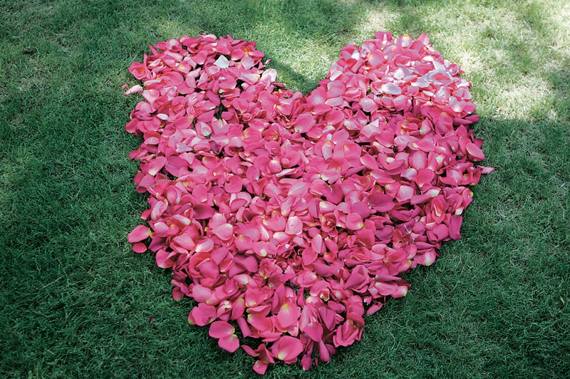 Hot pink flowers in shape of heart on grass
