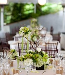 Wedding reception centerpiece of green and white flowers with manzanita branches