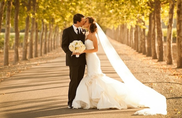 Couple kissing on roadway between trees