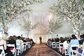 White tent wedding ceremony with wood aisle and tree decor