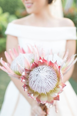Bride in off shoulder ball gown wedding dress holding large protea flower bouquet three protea