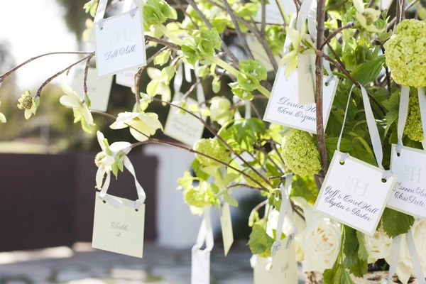 Seating cards hanging from branches by ribbon