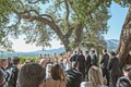 Bride and groom exchanging vows with bridesmaids groomsmen and guests watching vineyard wedding