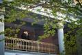 Harold Washington Library wedding venue chicago lgbt gay wedding tuxedos column gold railing kiss