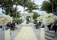 ivory rose petals aisle, palm trees behind ceremony arch