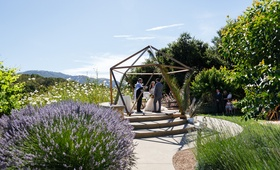 iko space used as chuppah altar for wedding geometric terrarium similar look outdoor ceremony