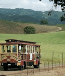 Wedding transportation in San Francisco-style trolley