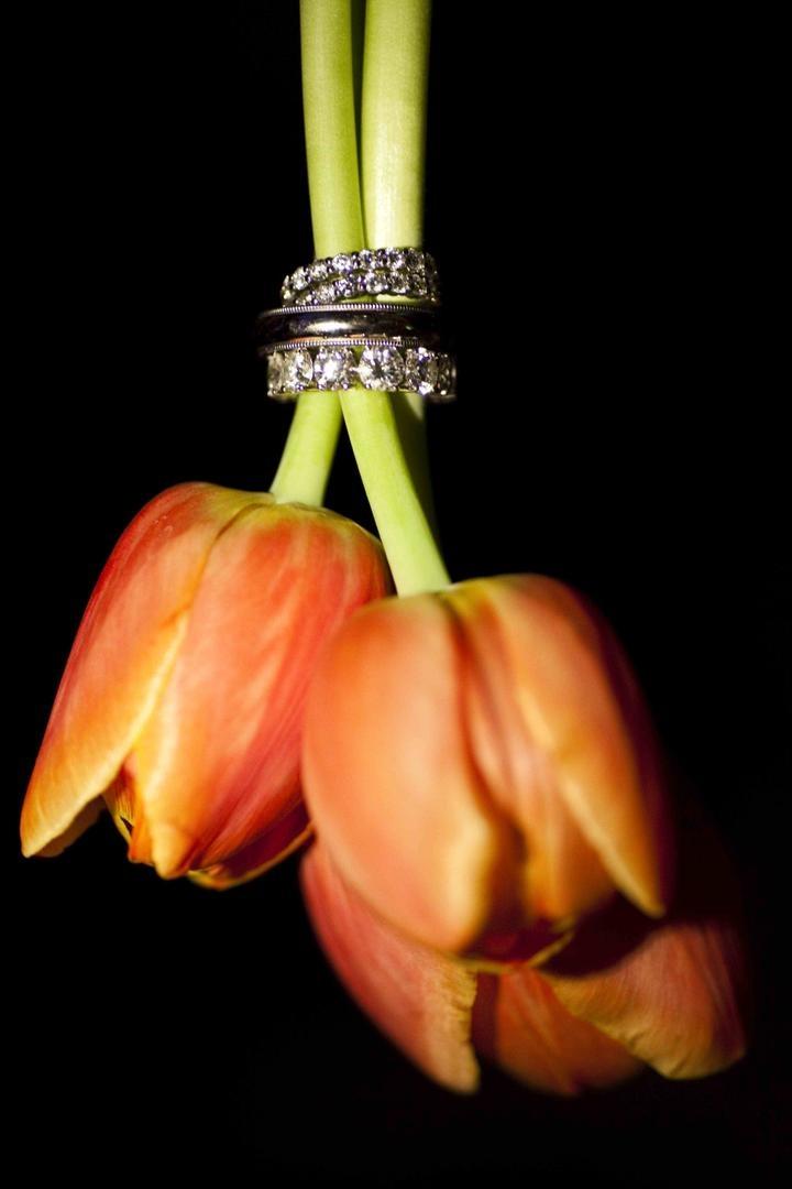 Eternity bands on orange tulip stems