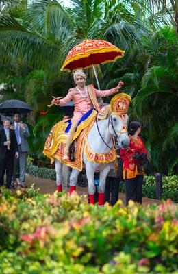 indian groom in sherwani on horseback for baraat