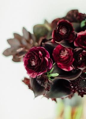 Burgundy black calla lily flower and burgundy oxblood rose ranunculus flowers slight greenery