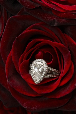large pear diamond halo engagement ring with  pavé splint shank in red rose