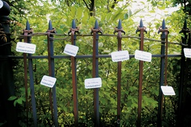 place cards displayed on wrought iron fence