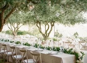 Wedding reception in garden outdoor wedding green garland white flowers vineyard chairs trees orbs