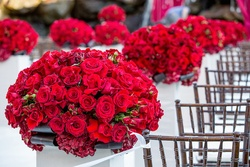 Crimson roses and hydrangeas on white pedestals