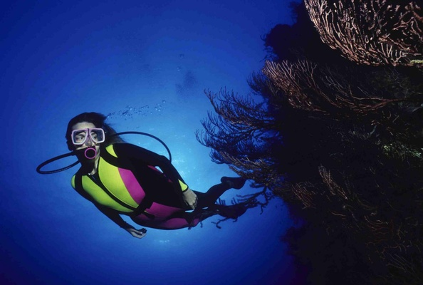 Enjoy snorkeling in Puerto Rico at W Retreat & Spa, Vieques Island