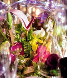 Open calla lily and orchids in glass dome