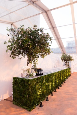 Bar at wedding made of green leaves and trees