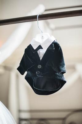 small tuxedo for puppy on hanger, dog as ring bearer tuxedo