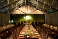 Alexis Cozombolidis and Hunter Pence wedding in San Francisco Hogwarts great hall inspiration long