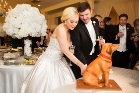 Second wedding cake bride and groom cutting into dog with red collar sitting down