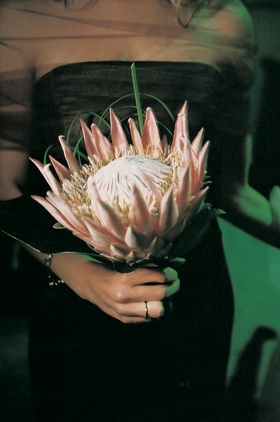Pink protea bouquets for bridesmaids