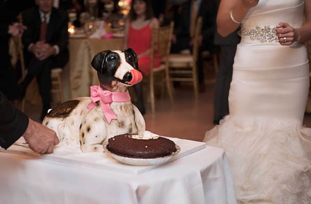 grooms cake made to look like his jack russell terrier as a surprise to him