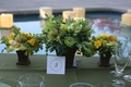 Wedding reception centerpieces with fruit and flowers