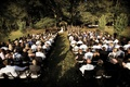 Outdoor wedding ceremony surrounded by trees