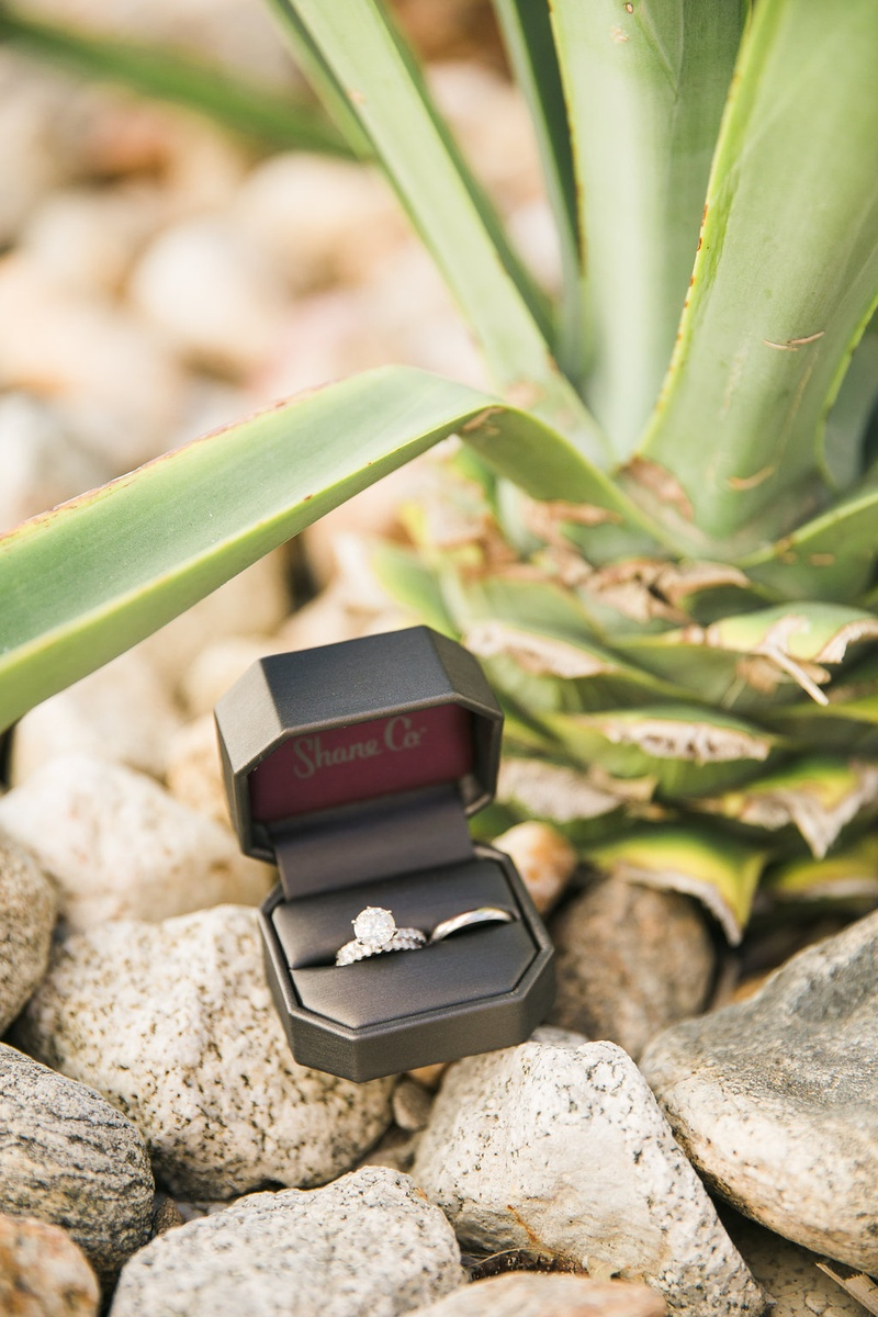 a brides wedding band and engagement ring next to grooms wedding band in box outside on rocks plant