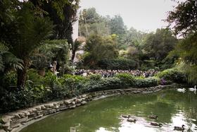 hotel bel-air swan lake wedding ceremony garden hotel venue luxury ceremony ideas