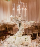 wedding reception crystal candelabra with swirling flowers at base white hydrangea rose flowers