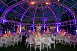 Palm House at the Brooklyn Botanic Gardens wedding