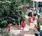 Bridesmaids in pink dresses walk down steps toward altar