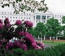 West Virginia resort with pink flowers