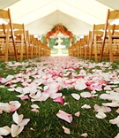 Pink petals covered grass aisle leading to altar
