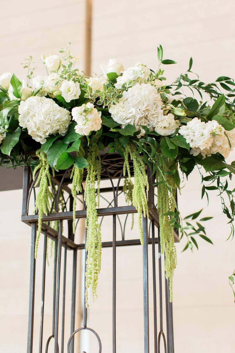 iron ceremony arch with white hyrdrangeas, green amaranthus