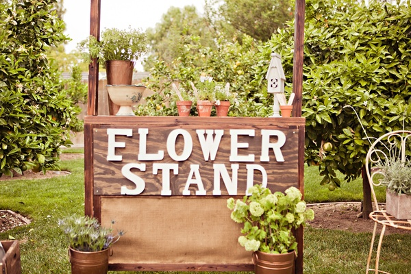 Wood stand where guests potted plants