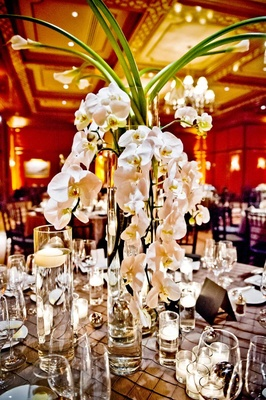 Cascading orchids and long-stemmed lilies