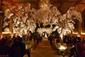 Ballroom wedding reception with tree branches and orchids down aisle and chuppah guests