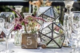 tahoe wedding with geometric terrariums and purple wildflowers