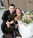 groom grins with laughing bride, dog licks bride's face