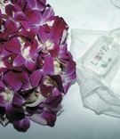 Purple lei, mints marked LOVE, and handkerchief